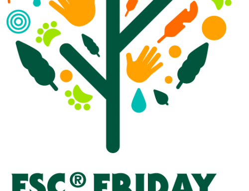 FSC-Friday am 25.September 2020